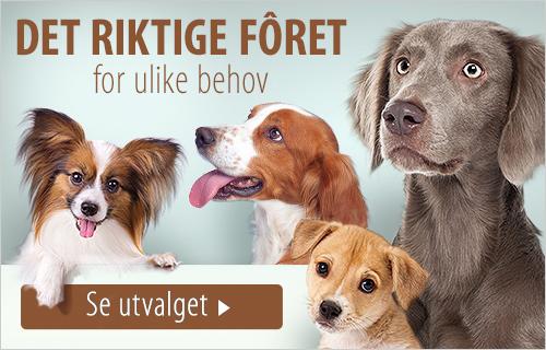 no_dog_food_breed