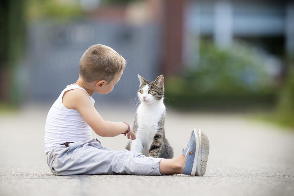 barn leker med katt