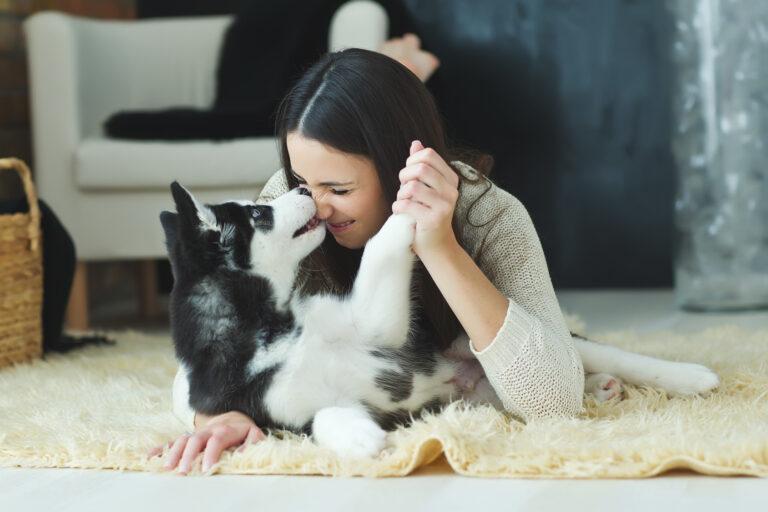 kosestund med hunden
