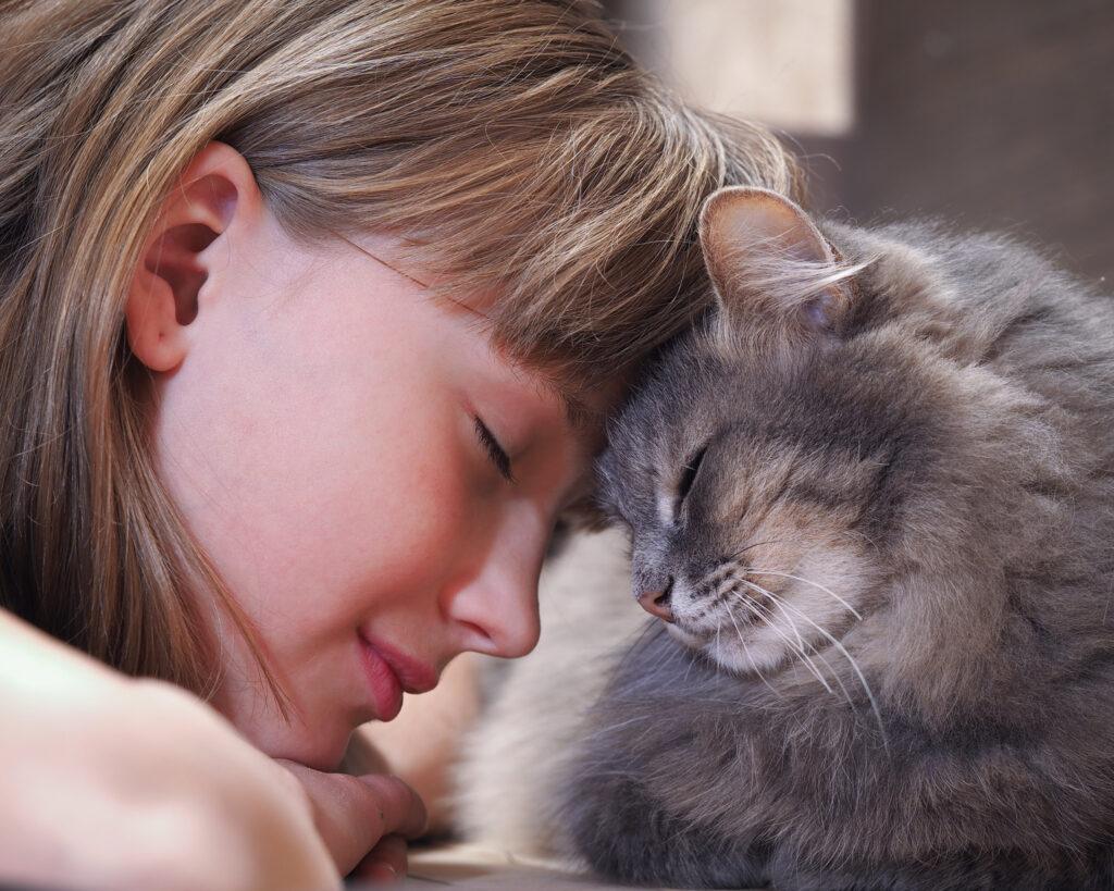 katt som koser med jente