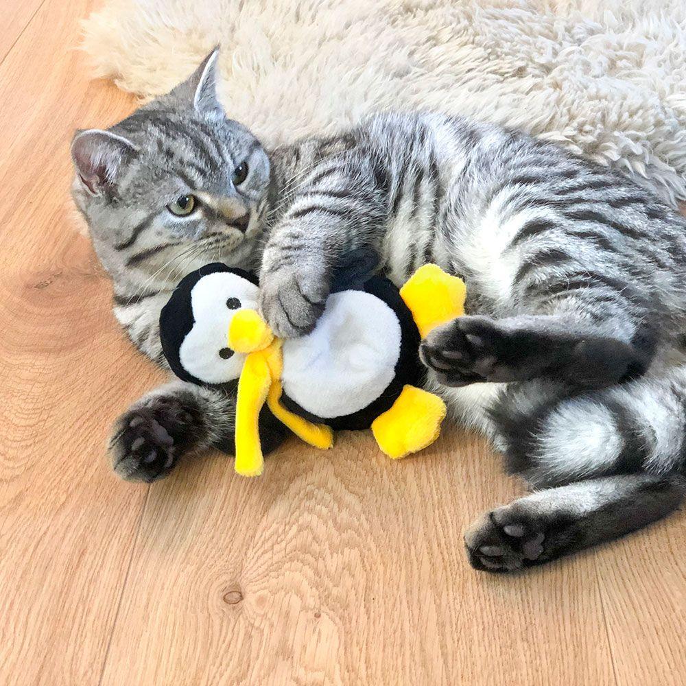 Pingvin Paddy julegave til katt