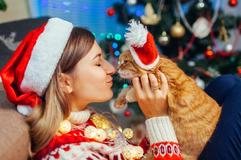 Julegaver til katt