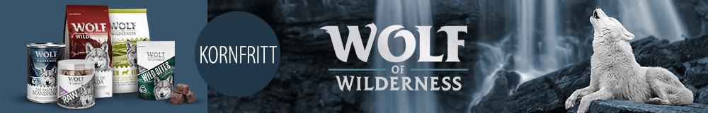 no_wow_hundefor_widget_1